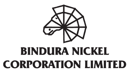 Nickel price slump worries BNC