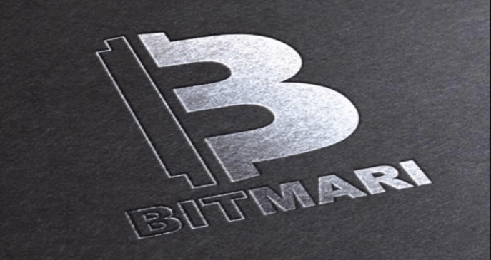 Bitmari slashes remittance costs