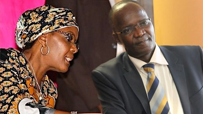 'Grace Mugabe owns Wellcash'