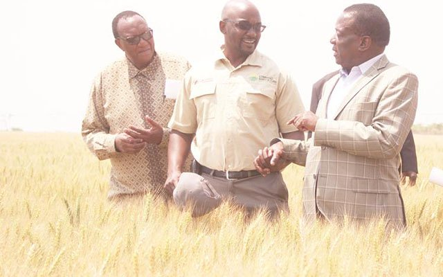 Govt mobilises $266m for Command Agric