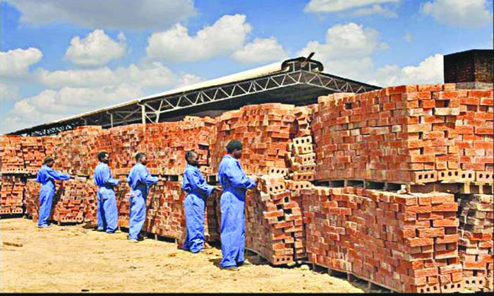 Inflation-spooked Zim punters pile into bricks