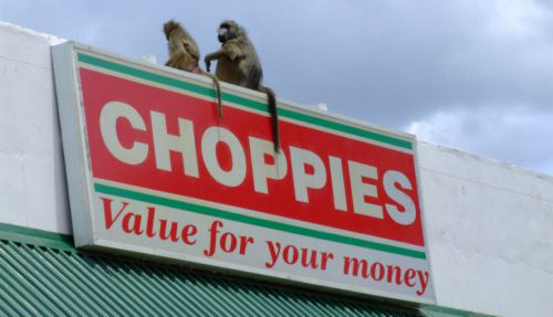 RMB, Investec swoop on Choppies-related firms
