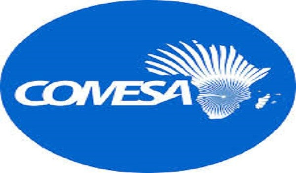 Comesa hunts for Ngwenya successor