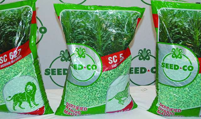 Seed Co profit jumps 5%
