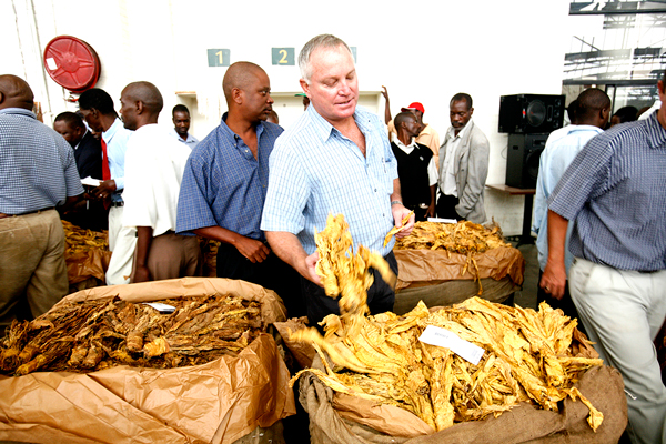 Tobacco output surpasses 200 million kgs